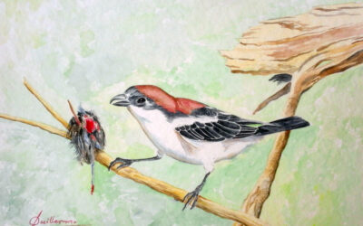 El parloteador de pájaros